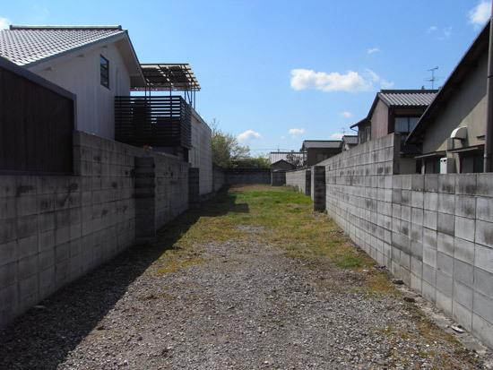 2011011月ハガキweb.jpg